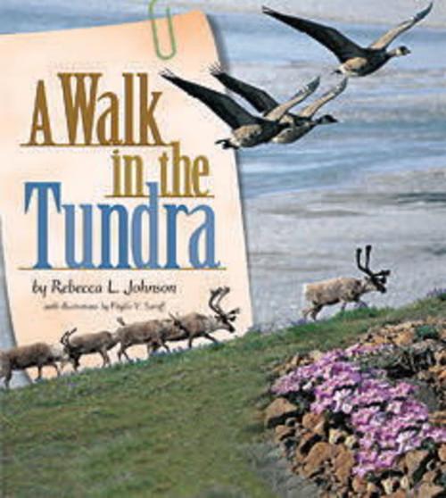 inZone - Zone 2 - A Walk in the Tundra