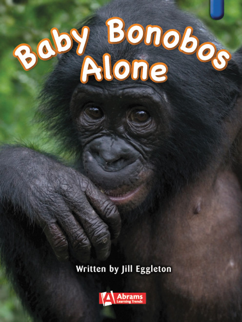 Key Links Literacy Blue Baby Bonobos Alone