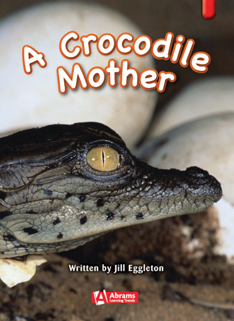 Key Links Literacy Red A Crocodile Mother