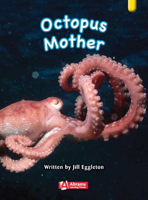 Key Links Literacy Yellow Octopus Mother