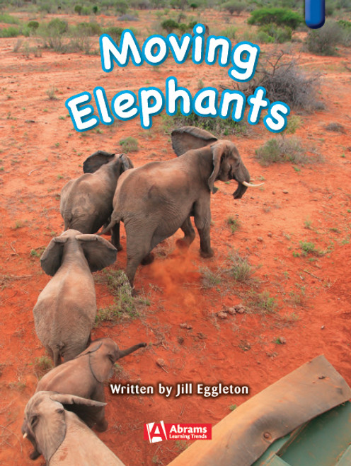 Key Links Literacy Blue Moving Elephants