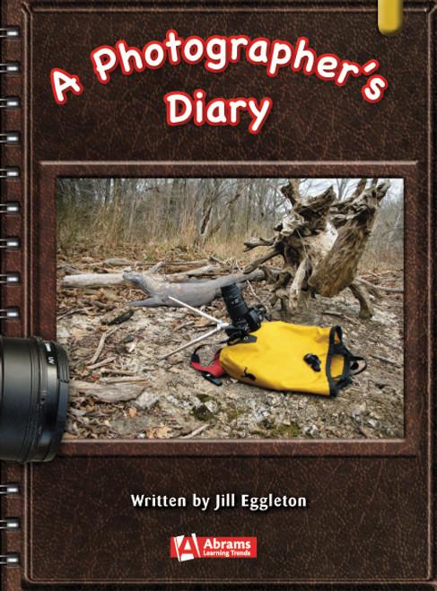 Key Links Literacy Gold Photographer's Diary