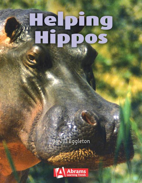 Key Links Literacy Turquoise Helping Hippos