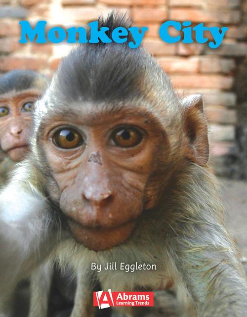 Key Links Literacy Turquoise Monkey City