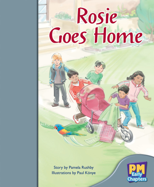 PM Early Chapters Silver Rosie Goes Home Lvl 23-24
