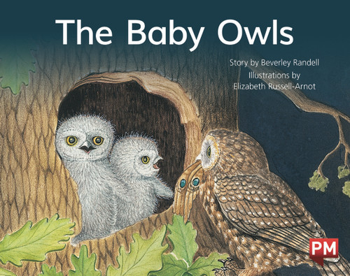 PM Library Red Level 4 The Baby Owls 6-pack