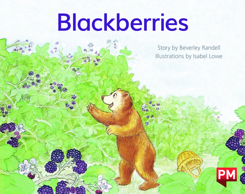 PM Library Yellow Level 6 Blackberries 6-pack