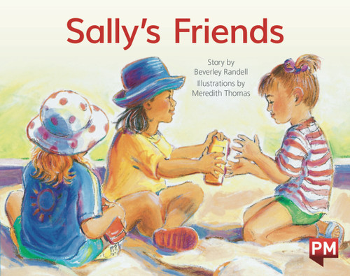 PM Library Blue Level 9 Sally's Friends 6-pack