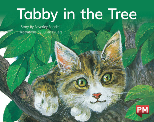 PM Library Blue Level 10 Tabby in the Tree 6-pack