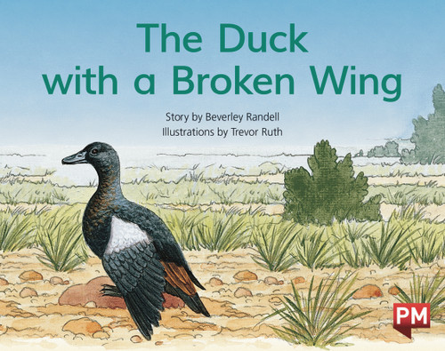 PM Library Blue Level 9 The Duck with the Broken Wing 6-pack