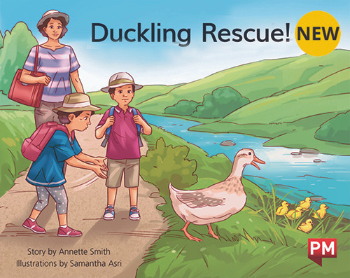 PM Library Green Level 12 Duckling Rescue 6-pack