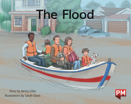 PM Library Green Level 14 The Flood 6-pack