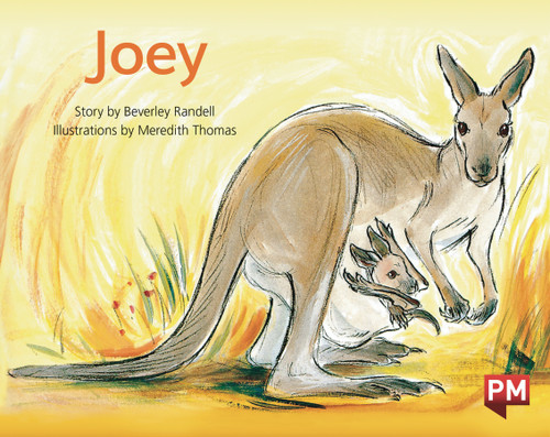 PM Library Green Level 14 Joey 6-pack