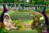 Teddy Bear Picinic Birthday Party Invitation