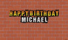 Personalized & custom birthday party banner for sale. Your message and text. Trash inspired. Buy online