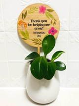 Plant Pot Planter Signs