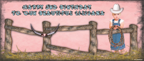 Party Banners - Cowgirl Farm Party Banner