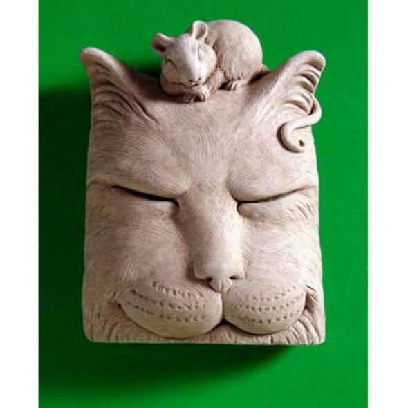 1161-Cat nap