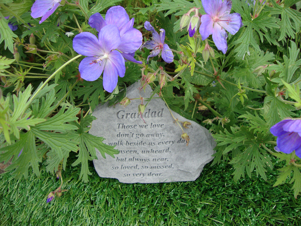 15524 -Grandad